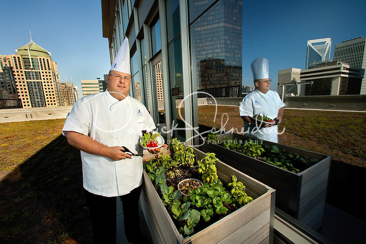 """The Charlotte Ritz-Carlton hotel roof is the location for Executive Chef Jon Farace's garden, cultivated for hotel culinary purposes and featuring lavender, mint and other fresh herbs and greens. The vegetated roof of the 18-story Ritz-Carlton, Charlotte is planted with 18,000 sedum plants to help reduce """"urban heat island effect."""" The green surface reflects, slows rain runoff and insulates the rooftop, keeping the hotel building cooler overall."""