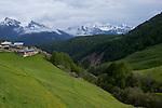 village de Souliers entre Arvieux et Chateau Queyras. <br /> Flowered high mountain pasture nearby Souliers village between Arvieux valley and Chateau Queyras valley