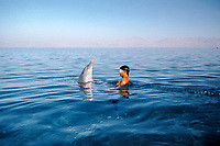 Snorkeler swimming with wild Bottlenose Dolphin, Tursiops truncatus, at surface, Nuweiba, Egypt, Red Sea., Northern Africa