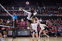 STANFORD, CA - November 15, 2017: Tami Alade, Jenna Gray, Merete Lutz at Maples Pavilion. The Stanford Cardinal defeated USC 3-0 to claim the Pac-12 conference title.