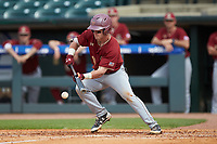 Jake Palomaki (11) of the Boston College Eagles lays down a bunt against the North Carolina State Wolfpack in Game Two of the 2017 ACC Baseball Championship at Louisville Slugger Field on May 23, 2017 in Louisville, Kentucky. The Wolfpack defeated the Eagles 6-1. (Brian Westerholt/Four Seam Images)