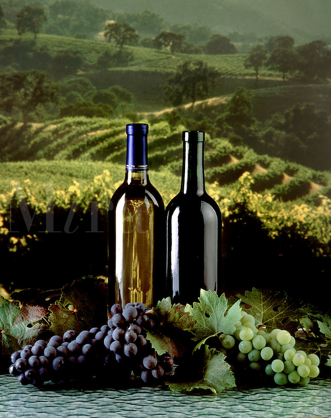 RED & WHITE WINE are one of the west coasts primary agricultural products