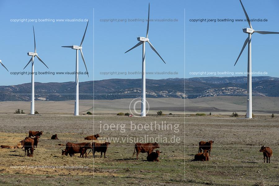 Spain, Andalusia, Cadiz, wind farm in village on cattle farm, Acciona AE-59 wind turbines