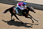 LOUISVILLE, KY - MAY 06: Carina Mia #5, ridden by Julien R. Leparoux, wins the Eight Belles Stakes on May 6, 2016 in Louisville, Kentucky. (Photo by Jon Durr/Eclipse Sportswire/Getty Images)