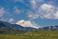 Mt Denali, North America's tallest mountain, Denali National Park, Interior, Alaska.