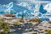 Summer landscape of ice bergs in Inner Lake George and Colony Glacier in the background.  Southcentral, Alaska.  Chugach Mountains<br /> <br /> Photo by Jeff Schultz/  (C) 2019  ALL RIGHTS RESERVED<br /> <br /> 2019 Into the Wild Alaska Photo Tour via Amazing Views