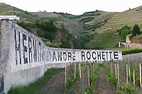 vineyard domaine andre rochette hermitage rhone france