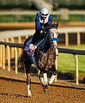 April 27, 2021 Crazy Beautiful gallops in preparation for the Kentucky Oaks at Churchill Downs in Louisville, Kentucky on April 27, 2021. EversEclipse Sportswire/CSM