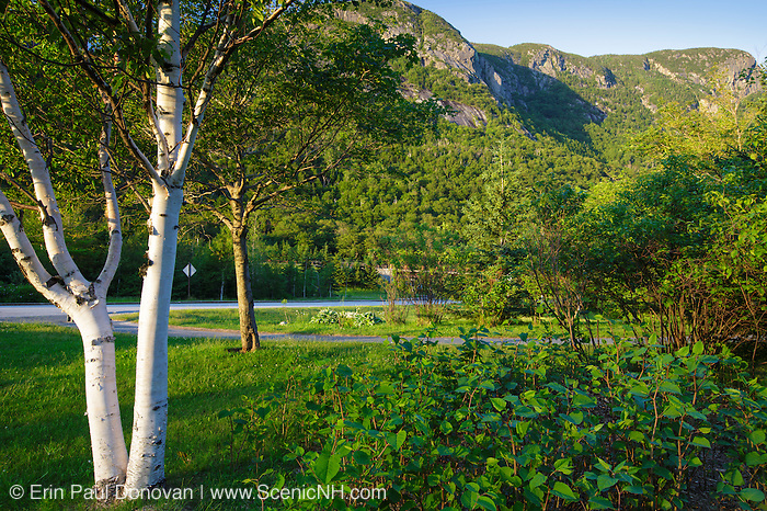 Franconia Notch State Park - Eagle Cliff during the summer months in the White Mountains, New Hampshire USA.