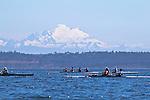 Open Water Racing: 2014 Rat Island