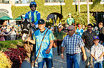 DEL MAR, CA  SEPTEMBER 4: #4 None Above the Law, ridden by Joe Bravo, in the paddock before the Del Mar Derby (Grade ll) on September 4, 2021, with Del Mar Thoroughbred Club in Del Mar, CA. (Photo by Casey Phillips/Eclipse Sportswire/CSM)
