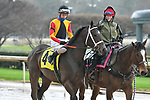 February 28, 2021: Big Time #4 , ridden by Joseph Rocco, Jr in the Dixie Belle Stakes for trainer Dallas Stewart at Oaklawn Park in Hot Springs,  Arkansas.  Ted McClenning/Eclipse Sportswire/CSM