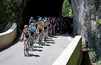 peloton led by Tony Martin (DEU/Jumbo-Visma) up the Col de Porte<br /> <br /> 73rd Critérium du Dauphiné 2021 (2.UWT)<br /> Stage 6 from Loriol-sur-Drome to Le Sappey-en-Chartreuse (167km)<br /> <br /> ©kramon