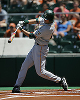 Baylor DH Dustin Dickerson swings against Texas on Saturday May 3rd, 2008. Photo by Andrew Woolley / Four Seam Images