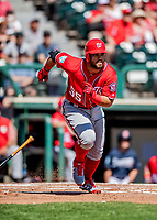 25 February 2019: Washington Nationals infielder Jose Marmolejos in action during a pre-season Spring Training game against the Atlanta Braves at Champion Stadium in the ESPN Wide World of Sports Complex in Kissimmee, Florida. The Braves defeated the Nationals 9-4 in Grapefruit League play in what will be the Braves' last season at the Disney / ESPN Wide World of Sports complex. Mandatory Credit: Ed Wolfstein Photo *** RAW (NEF) Image File Available ***