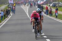 Sep Vanmarcke (BEL/EF Education First)<br /> <br /> 103rd Ronde van Vlaanderen 2019<br /> One day race from Antwerp to Oudenaarde (BEL/270km)<br /> <br /> ©kramon