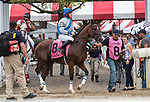 August 18, 2021: #8 Redicean (GB) ridden by Gerald Galligan in the post parade before the start of the Grade 1 Jonathan Sheppard Handicap at Saratoga Race Course in Saratoga Springs, N.Y. on August 18, 2021. <br /> Robert Simmons/Eclipse Sportswire/CSM
