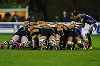 Matt Heeks of London Scottish (right) puts the ball into the scrum during the Greene King IPA Championship match between London Scottish Football Club and Nottingham Rugby at Richmond Athletic Ground, Richmond, United Kingdom on 16 October 2015. Photo by David Horn.