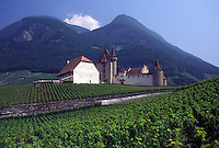 Switzerland, castle, vineyard, Vaud, Aigle, Chateau d' Aigle surrounded by vineyards in the Canton of Vaud.