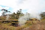 Kilauea Steam Vents, Hawaii