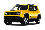 Jeep Renegade Trailhawk SUV 2019