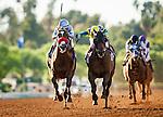October 04 2014: Rich Tapestry with Olivier Doleuze (right) narrowly defeats Goldencents and Rafael Bejarano to win the Santa Anita Sprint Championship at Santa Anita Park in Arcadia CA. Alex Evers/ESW/CSM