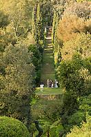 Le Domaine du Rayol:<br /> le grand escalier et la pergola. Dans le creux, les fougères arborescentes du jardin de Nouvelle-Zélande.