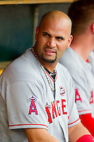 Albert Pujols (5) of the Los Angeles Angels prior to the game against the Detroit Tigers at Comerica Park on June 25, 2013 in Detroit, Michigan.  The Angels defeated the Tigers 14-8.  (Brian Westerholt/Four Seam Images)