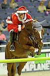 Nick Dello Joio Participates in the $20,000 Gamblers Choice Costume Jump at The 53rd annual Washington International Horse Show at the Verizon Center in  Washington D.C. on 10/27/11 (Ryan Lasek / Eclipse Sportwire)