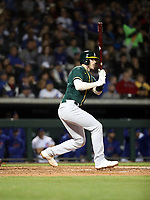 Jonah Heim - Oakland Athletics 2020 spring training (Bill Mitchell)