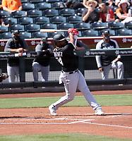 Eloy Jimenez - Chicago White Sox 2021 spring training (Bill Mitchell)