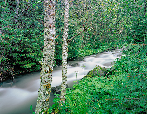 Hood River near Mount Hood, Cascade Mountains, Elkhorn, Oregon .  John leads private photo tours throughout Colorado. Year-round Colorado photo tours. .  John offers private photo tours throughout the western USA, especially Colorado. Year-round.
