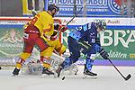 Brett Olson (Nr.16 - ERC Ingolstadt) und Nicholas B. Jensen (Nr.48 - Duesseldorfer EG) vor Torwart Mathias Niederberger (Nr.35 - Duesseldorfer EG) beim Spiel in der DEL, ERC Ingolstadt (dunkel) - Duesseldorfer EG (hell).<br /> <br /> Foto © PIX-Sportfotos *** Foto ist honorarpflichtig! *** Auf Anfrage in hoeherer Qualitaet/Aufloesung. Belegexemplar erbeten. Veroeffentlichung ausschliesslich fuer journalistisch-publizistische Zwecke. For editorial use only.