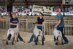 Sheep show.<br /> <br /> Opening day of the 82nd annual Amador County Fair, Plymouth, California, with Mutton Bustin' and the Miss Amador Scholarship Pageant.<br /> .<br /> .<br /> .<br /> @AmadorCountyFair, #1SmallCountyFair, #VisitAmador, #PlymouthCalifornia, #AmadorCountyFair, #Best4DaysOfSummer, #AmadorCounty, #26thDAA