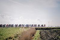 Peloton in the infamous windy 'Moeren'<br /> <br /> Driedaagse Brugge-De Panne 2018<br /> Bruges - De Panne (202km)
