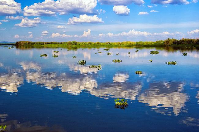 Traveling down the Shire River to Liwonde safari park, Malawi