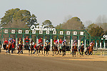 The starting gate during the running of the Honeybee Stakes (Grade III) at Oaklawn Park in Hot Springs, Arkansas-USA on March 8, 2014. (Credit Image: © Justin Manning/Eclipse/ZUMAPRESS.com)