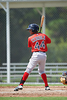 Boston Red Sox Lorenzo Cedrola (44) during an Instructional League game against the Minnesota Twins on September 24, 2016 at CenturyLink Sports Complex in Fort Myers, Florida.  (Mike Janes/Four Seam Images)