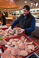 Europe/France/Nord-Pas-de-Calais/Pas-de-Calais/62/Le Touquet: Poissonnerie Ramet - Coquilles Saint-Jacques de la Côte d'Opale [Non destiné à un usage publicitaire - Not intended for an advertising use]
