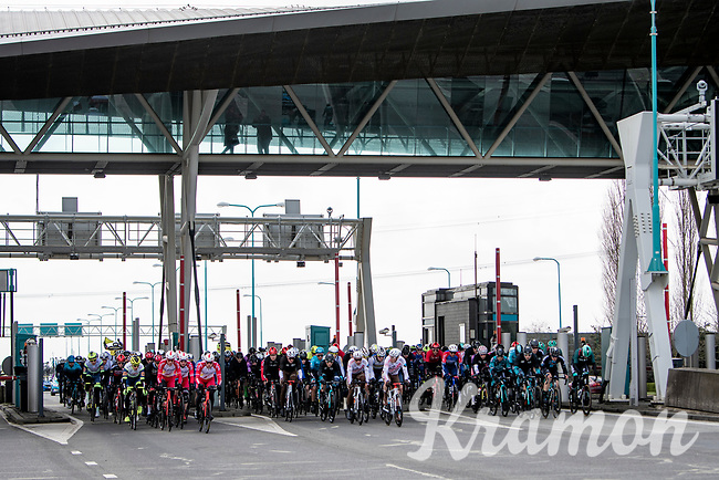 peloton passing through the tollbooth (without paying)<br /> <br /> 109th Scheldeprijs 2021 (ME/1.Pro)<br /> 1 day race from Terneuzen (NED) to Schoten (BEL): 194km<br /> <br /> ©kramon
