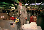 Crufts Dog Show Bichon Frises pet dogs and owner. National Exhibition Centre Birmingham  1990s 1991 UK <br />