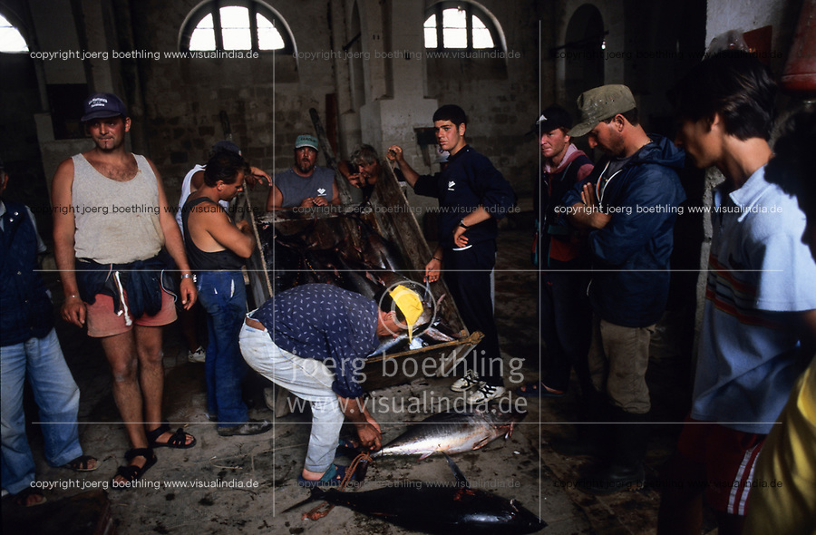 ITALY, Sicily, Egedian island Favignana, La Mattanza, traditional fishing of bluefin Tuna fish, catch of the day in the Tonnara