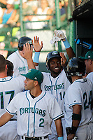 Daytona Tortugas outfielder Junior Arias (14) being congratulated by his teammates after homering during a game against the Tampa Yankees at Radiology Associates Field at Jackie Robinson Ballpark on June 13, 2015 in Daytona, Florida. Tampa defeated Daytona 8-6. (Robert Gurganus/Four Seam Images)