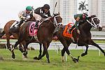 March 7, 2015: Eh Cumpari with Jose Caraballo up wins the Palm Beach (G3T). Gulfstream Park, Hallandale Beach (FL). Arron Haggart/ESW/CSM
