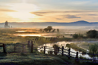 Timmerman Ranch, Williamson River, Oregon. Early morning.