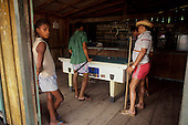 Cafezal, Brazil. Rural bar; men playing pool. Para State.