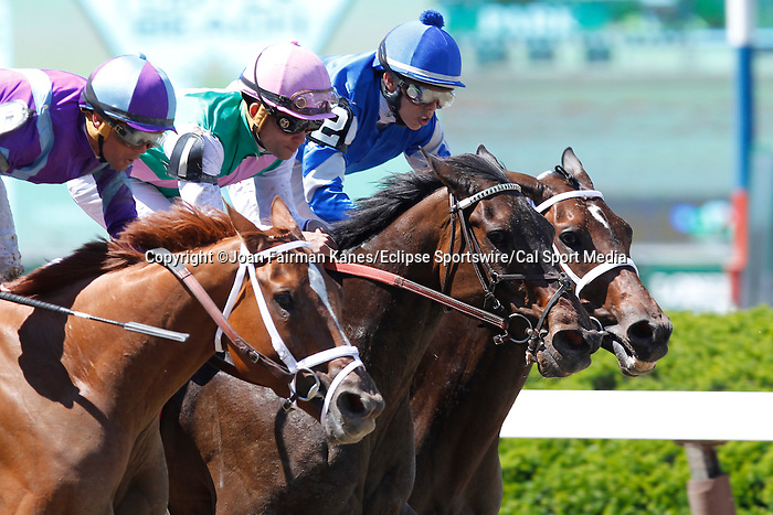 June 7, 2014: #1 Close Hatches (center), trained by Bill Mott and ridden by Joel Rosario, wins the 46th running of the Grade I Ogden Phipps, one mile and a sixteenth for fillies and mares four and older at Belmont Park, Elmont, NY Princess of Sylmar (left), Javier Castellano up, is second; #2 Antipathy, Irad Ortiz Jr. up, is third. ©Joan Fairman Kanes/ESW/CSM