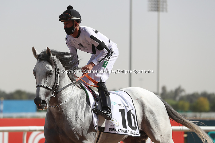 March 27, 2021: MUBASHER AL KHALEDIAH (SA) #10 in the post parade for the Kahayla Classic on Dubai World Cup Day, Meydan Racecourse, Dubai, UAE. Shamela Hanley/Eclipse Sportswire/CSM