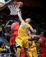 Harper Kamp of California fights for a loose ball against Angelo Chol of Arizona during the game at Haas Pavilion in Berkeley, California on February 2nd, 2012.  Arizona defeated California, 78-74.