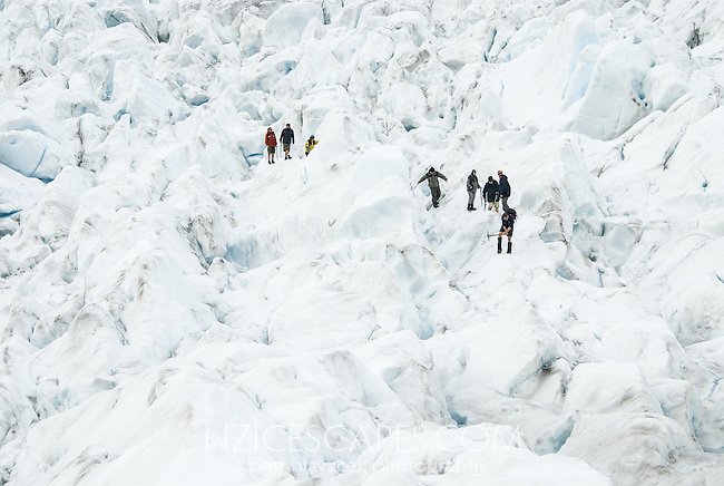 Guided group of tourists on Franz Josef Glacier,  Westland National Park, West Coast, UNESCO World Heritage Area, South Westland, New Zealand